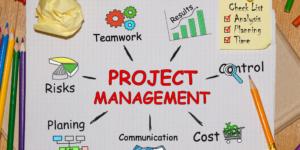 infografica sul project management
