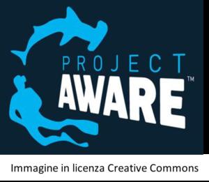 grafica ironica sulla project awareness